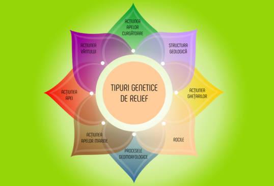 Nutriție terapeutică