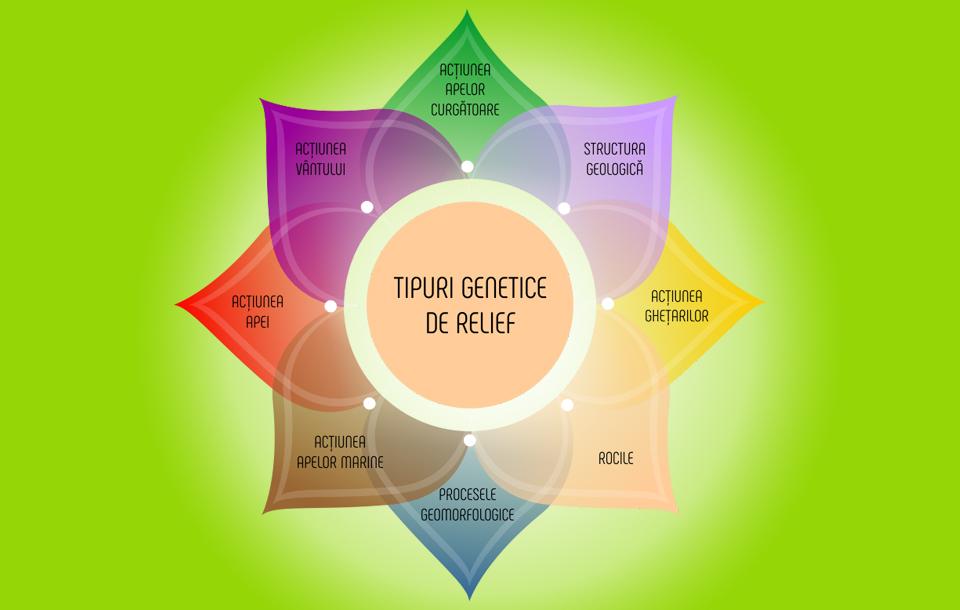 nutritie-terapeutica