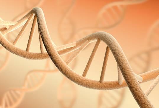 Teste genetice